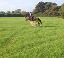 Horse Riding Jumping Lessons at Cheshire Riding